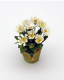 Handmade 1/12th/ 1 inch scale dollshouse Potted Daisies