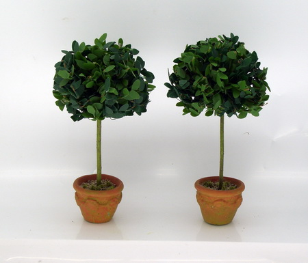 Topairy Tree's - Pair